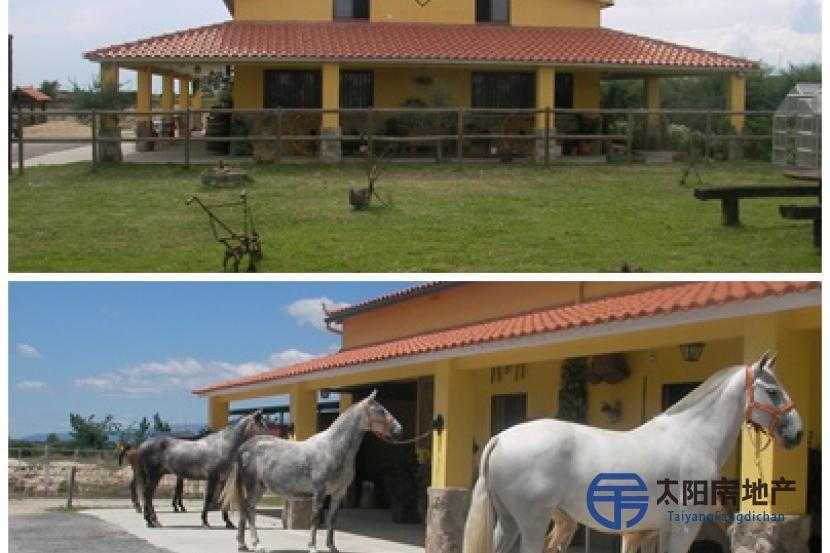 Alojamiento rural 2 Encina