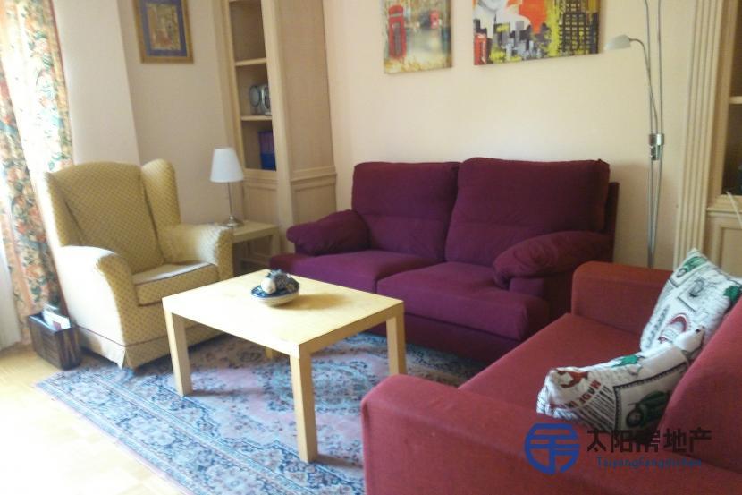 出租位于Madrid (马德里省)的单身公寓