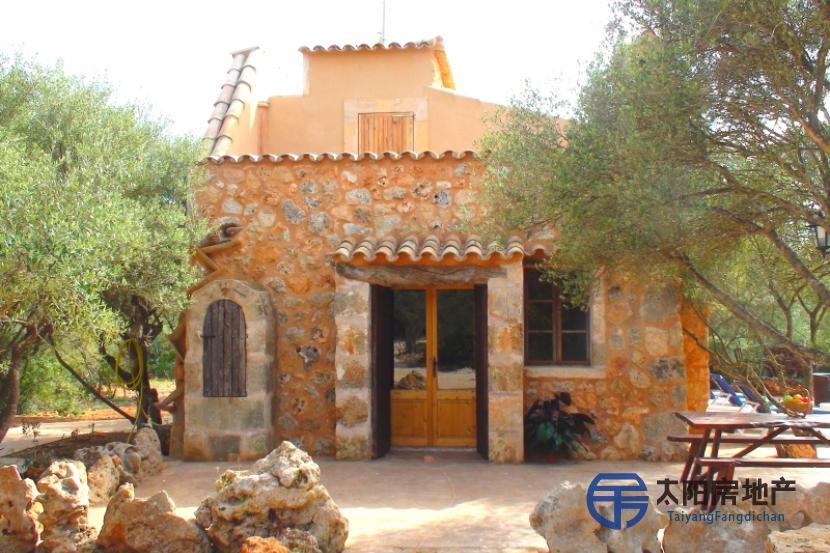 出租位于Campos (巴利阿里省)市外的郊外别墅
