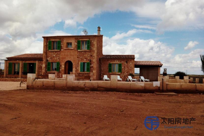 出租位于Rapita (Sa) (巴利阿里省)市外的郊外别墅