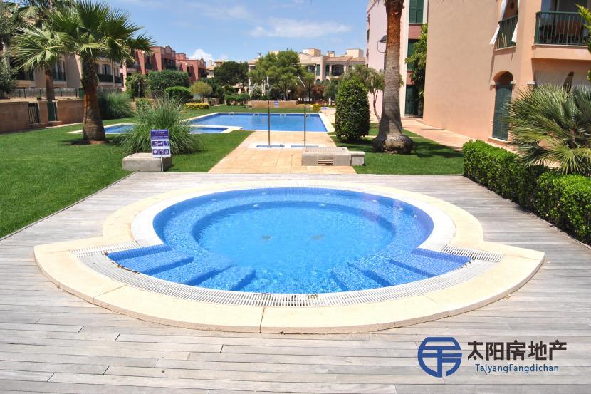 销售位于Urbanizacion Sa Torre (巴利阿里省)的单身公寓