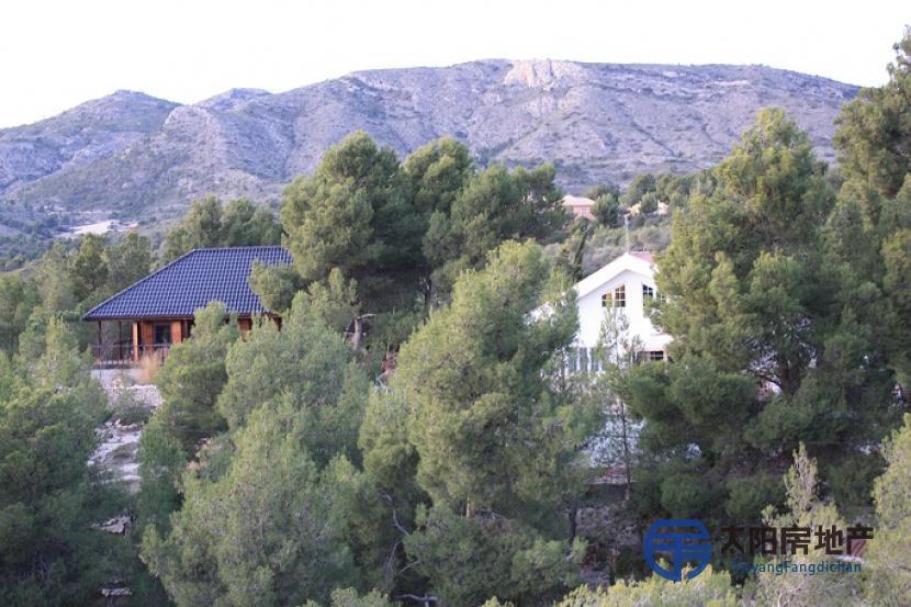 Chalet en Venta en Sax (Alicante)