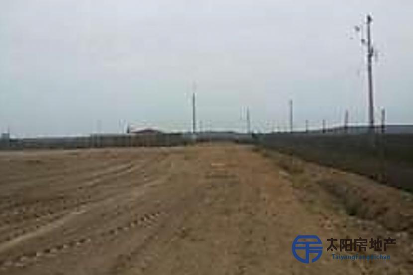 4150 m2. Frente a Playa Las Machas, a pasos de la construccion de mega Puerto Arica