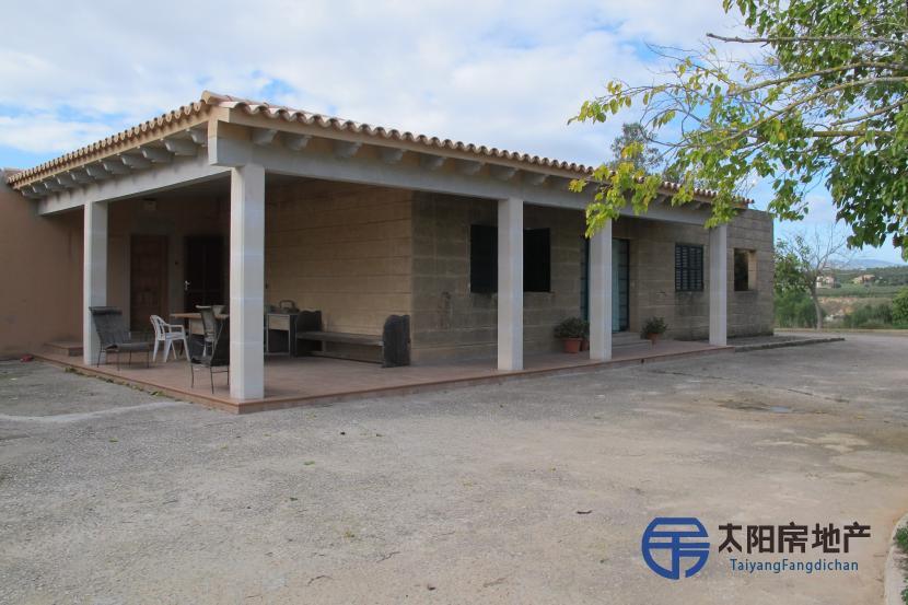 销售位于Palma De Mallorca (巴利阿里省)的独立房子