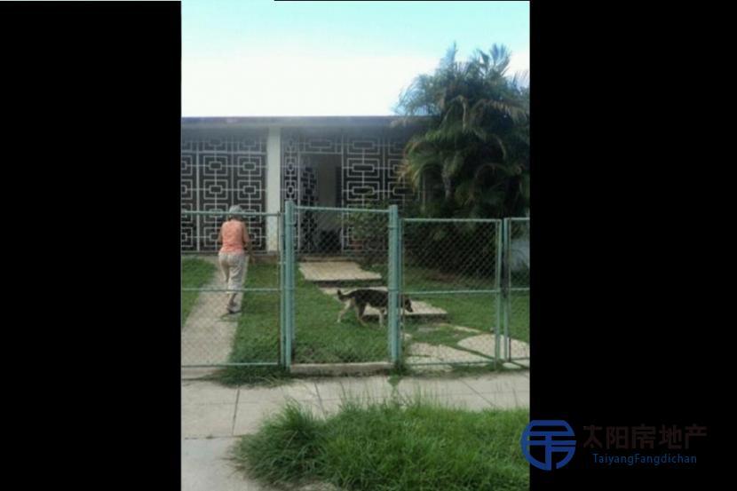 出售古巴哈瓦那的房子