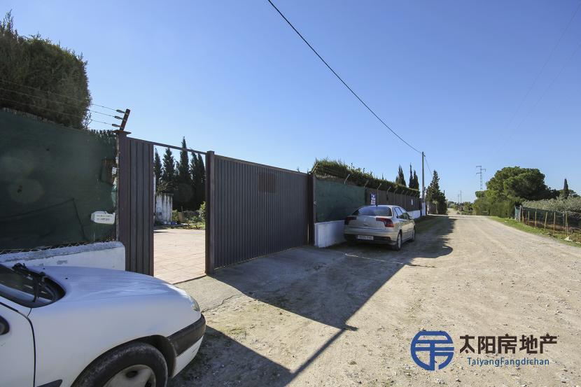 销售位于Jerez De La Frontera (加的斯省)市外的独立房子