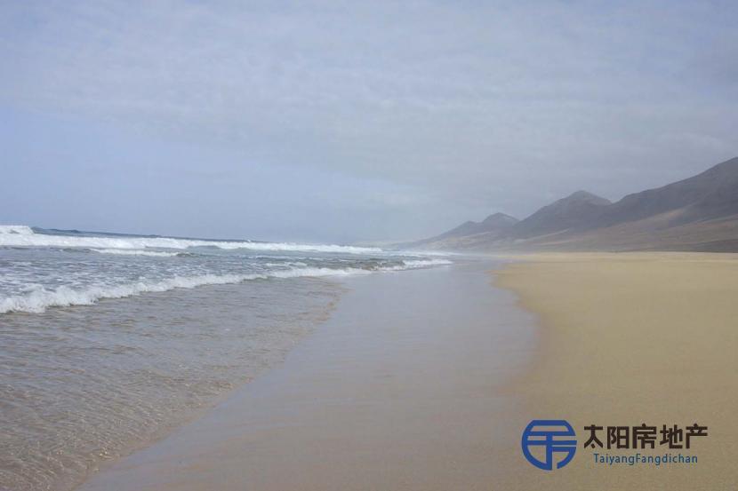 位于富埃特文图拉岛南部,(靠近)天堂海滩的无与伦比的庄园