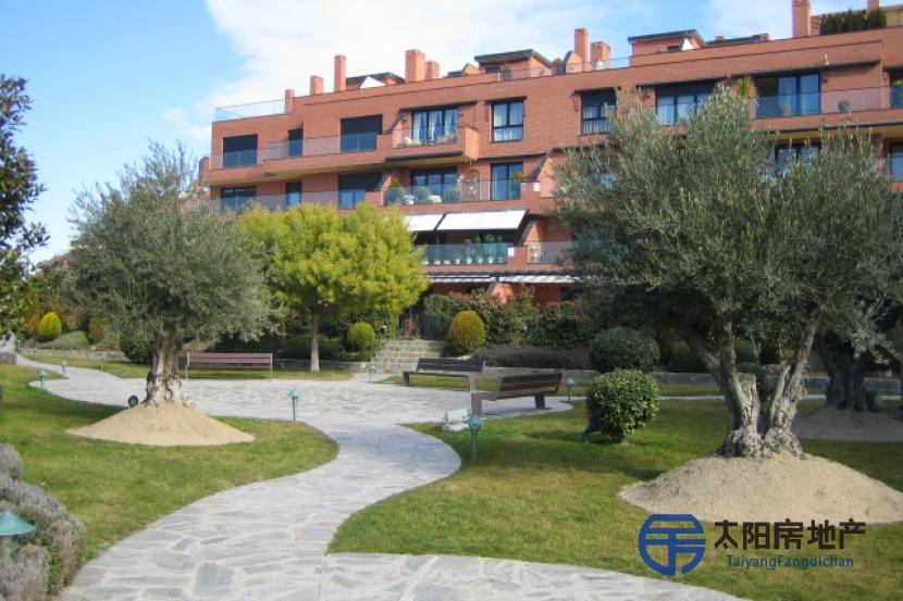Piso en Venta en Pozuelo De Alarcon (Madrid)