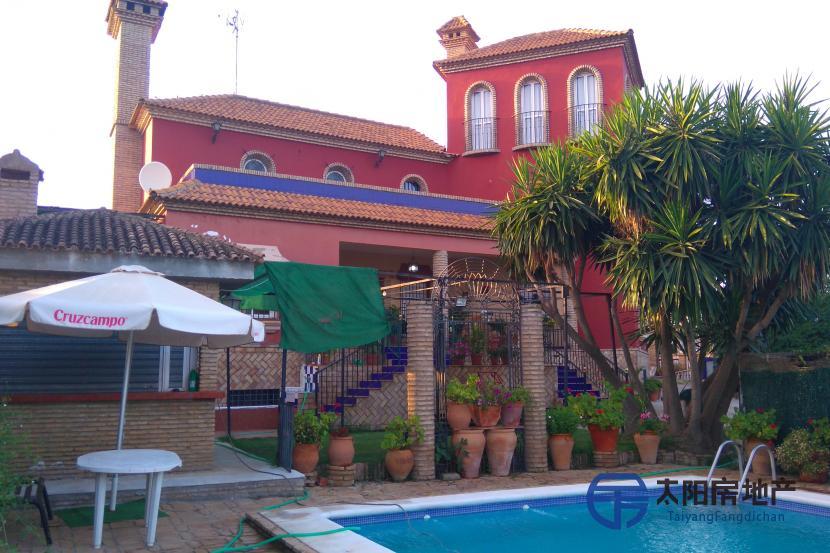 销售位于Castilblanco De Los Arroyos (塞维利亚省)市外的独立房子