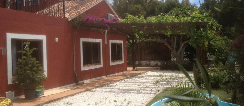 房产搜索 倚着大海和高山被鲜花包围的房子