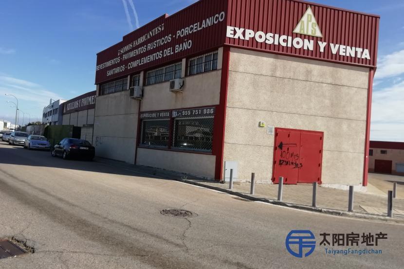 Aznalcazar工业区的工业建筑