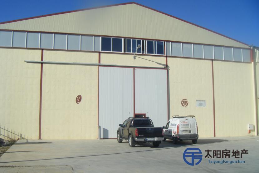 工业厂房,位于La Ribera del Duero里贝拉格兰德尔杜罗的心脏