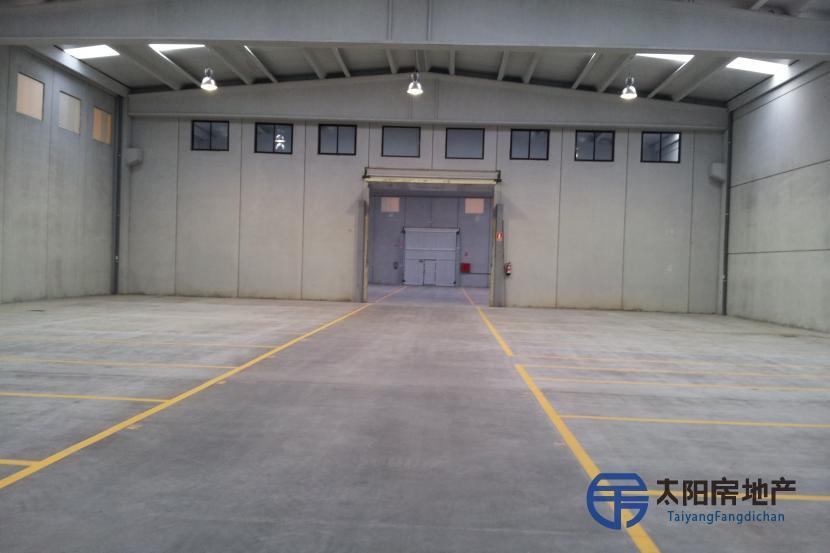 现有厂房,位于La Ribera del Duero里贝拉格兰德尔罗市的心脏