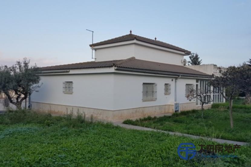 销售位于Vinaros (卡斯特隆省)市外的别墅