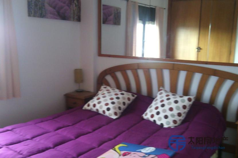 Apartamento en Alquiler en Calvia (Baleares)