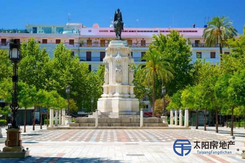 位于塞维利亚市中心的Su...