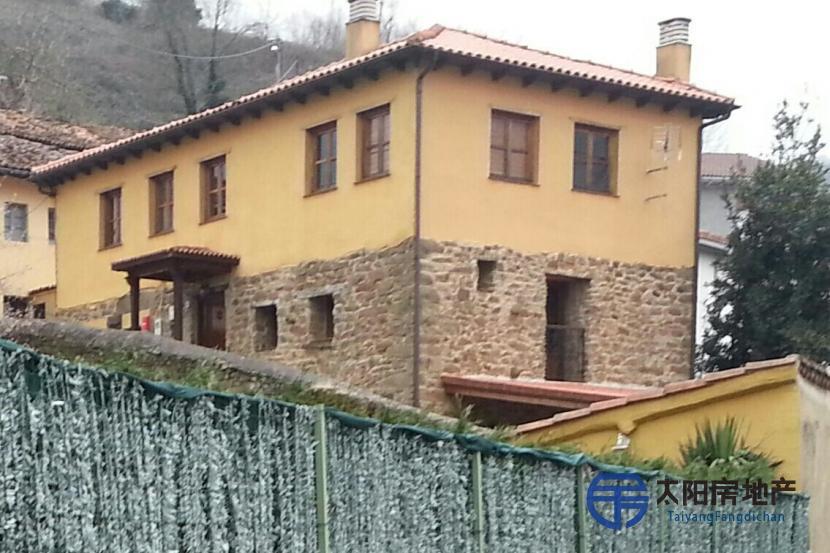 销售位于Mieres Del Camino (阿斯图里亚斯省)市外的独立房子