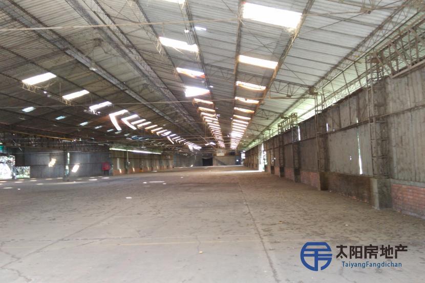 出售仓库(占地5.740平方米以及总18.000平方米空地面积)