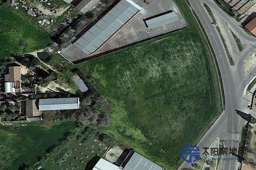Parcela o Terreno de 8000 m2