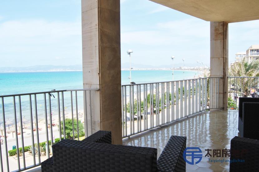 Apartamento en Alquiler en Palma De Mallorca (Baleares)