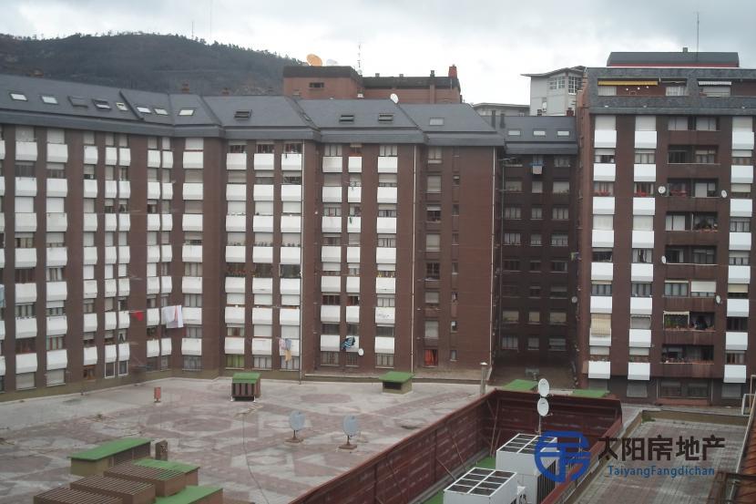 Piso en Alquiler en Oviedo (Asturias)