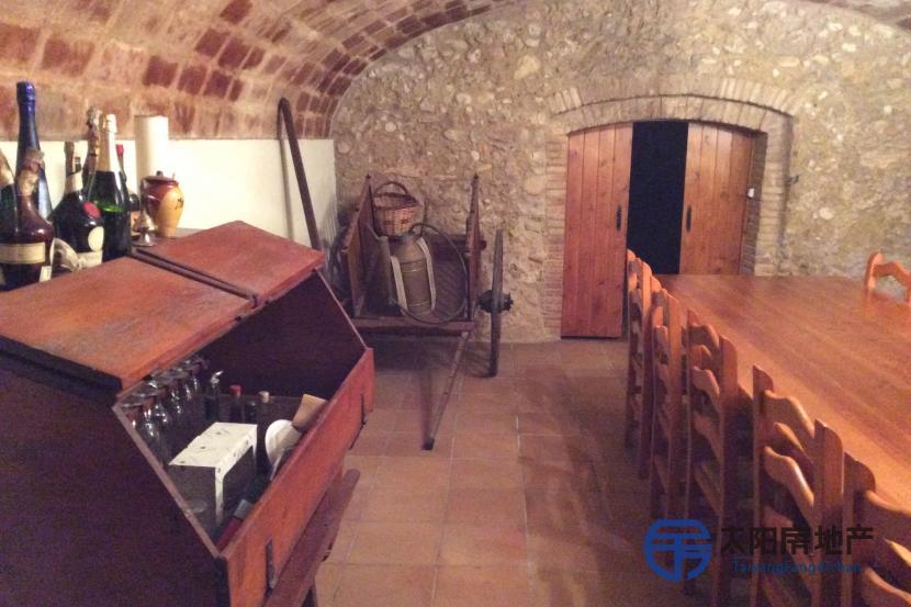 销售位于Sant Sadurni D´Anoia (巴塞罗那省)市外的独立房子