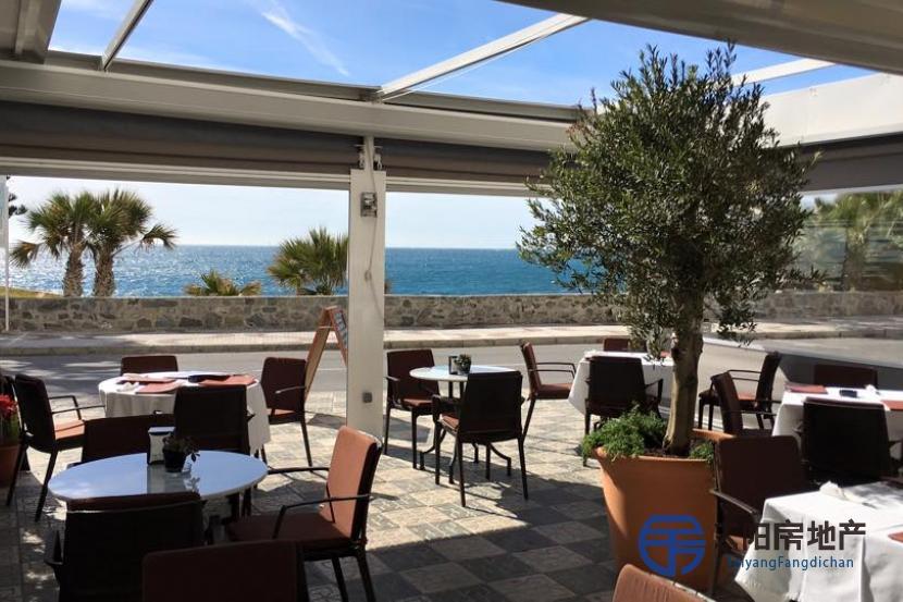 位于阿尔穆涅卡尔海滩主干道的餐厅