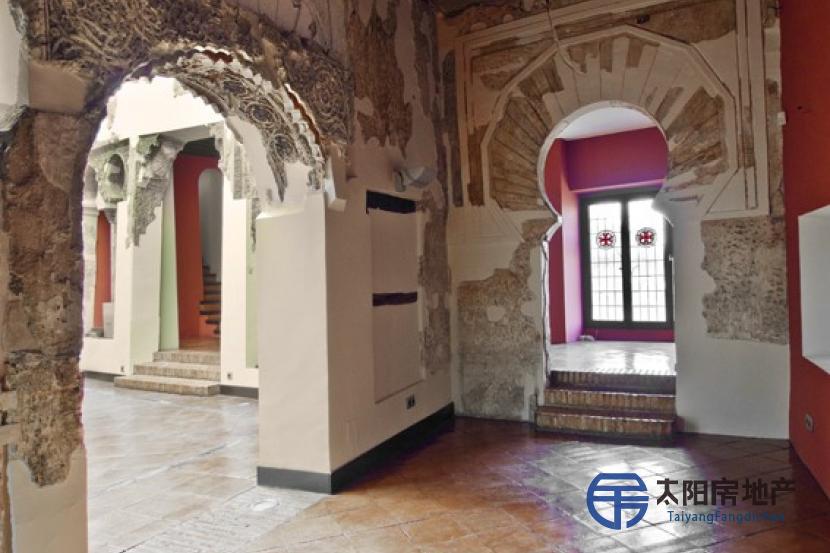 托莱多古城区小宫殿出售