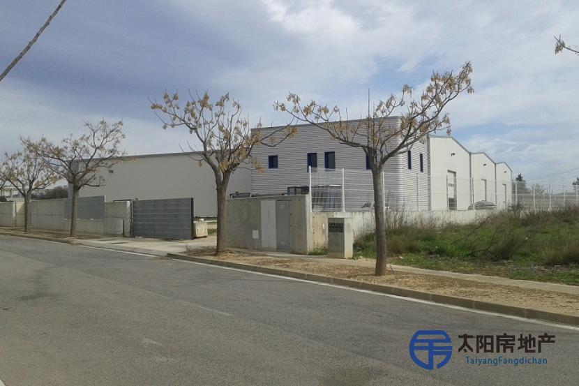 工业仓库和配套服务在售4800平方米