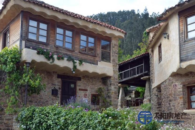 Pequeño hotel rural en el centro de Asturias