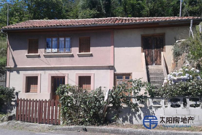 销售位于La Llovera (Siero) (阿斯图里亚斯省)的独立房子
