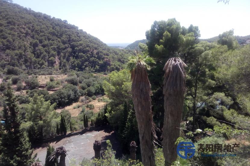 Parcela en Serra desde 400 a 2000 m2