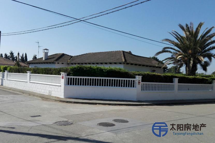 出售位于Nuez De Ebro (萨拉戈萨省)的别墅