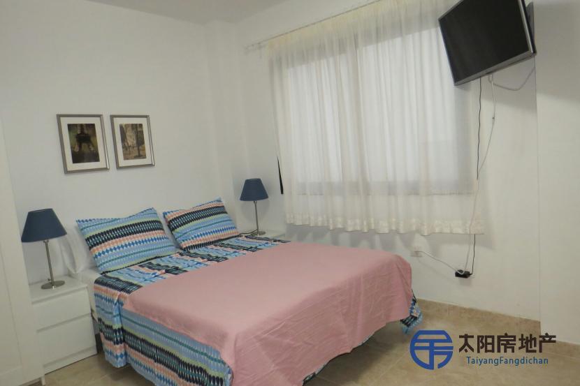 Apartamento en Alquiler en Las Palmas De Gran Canaria (Las Palmas)