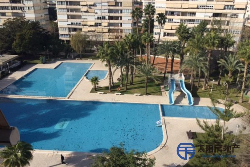 Apartamento en Venta en Alicante/Alacant (Alicante)