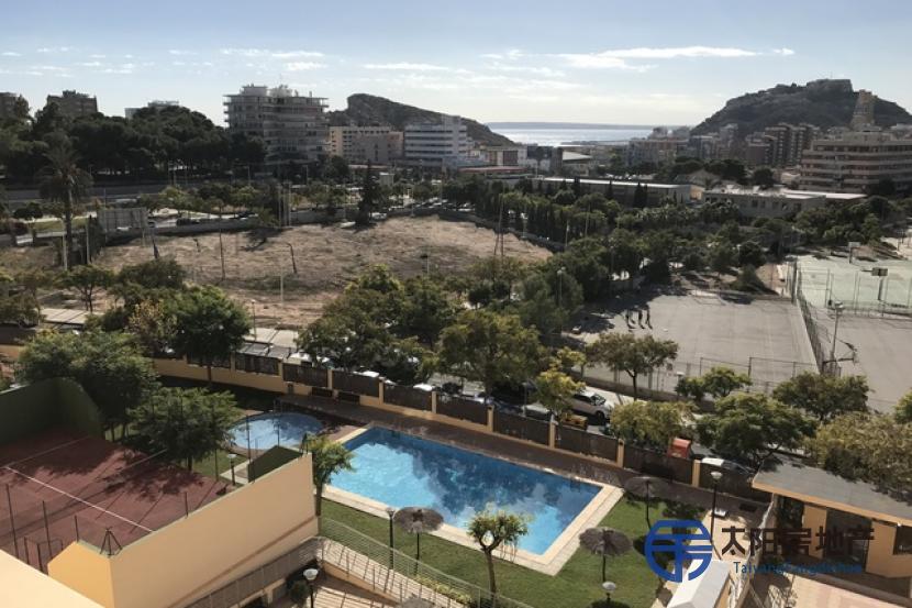 Piso en Alquiler en Alicante/Alacant (Alicante)