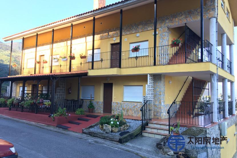 在西班牙为3个家庭出售带有居留许可的房地产