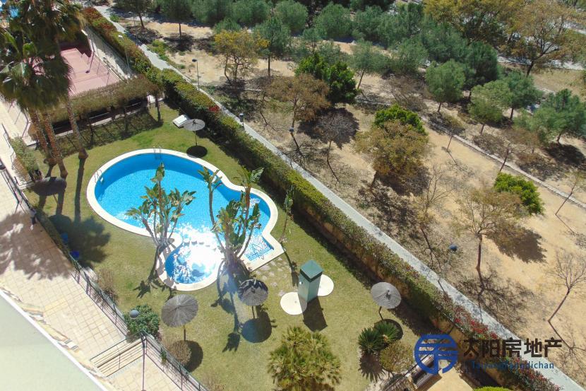 出售位于Alicante/Alacant (阿里坎特省)市中心的公寓