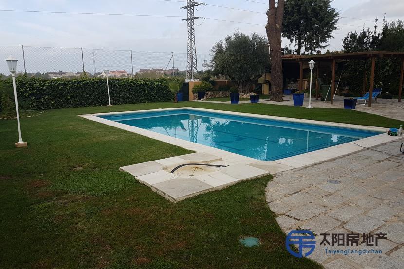 出售位于El Molar (马德里省)的别墅