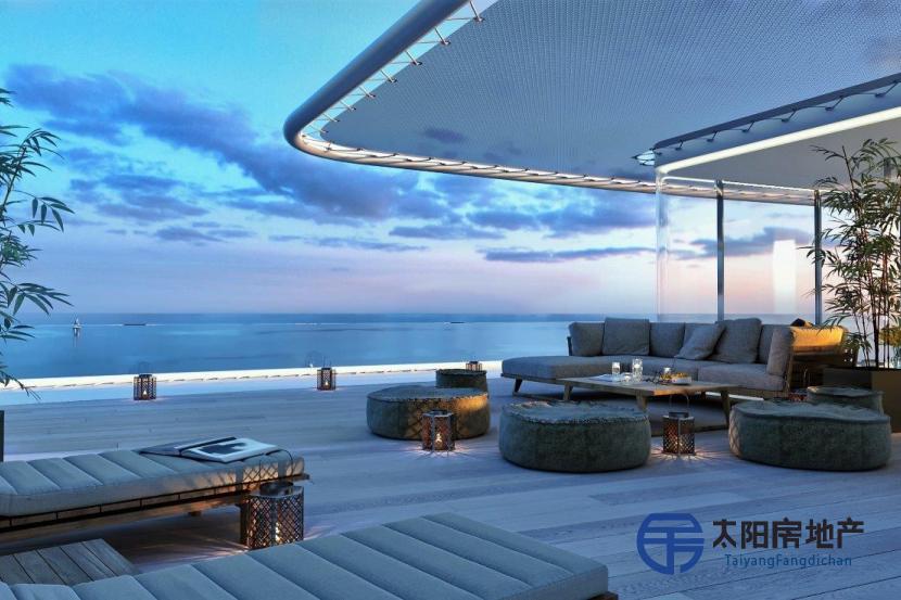 公寓和阁楼唯一项目  -...