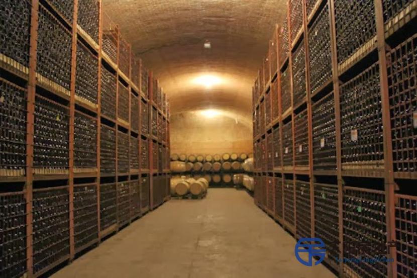位于阿根廷的高档酒窖