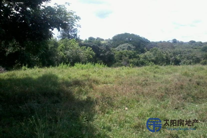 Vendo 37 hectáreas en Panama - Darién