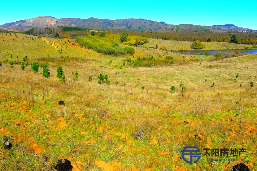 Large rural property for sale in Chile