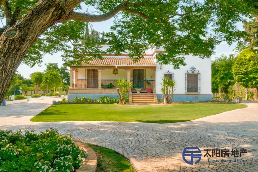 别墅出售在Villanueva德尔阿里斯卡尔