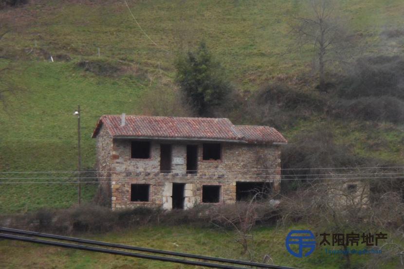 出售位于Argamoso (阿斯图里亚斯省)市外的别墅