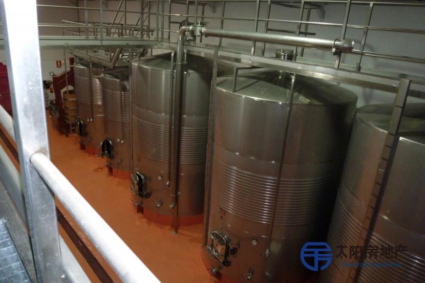 酒庄与葡萄园专营优质葡萄...