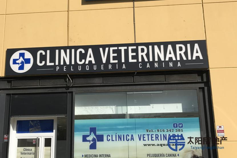 兽医诊所转让。没有必要成为兽医来管理业务
