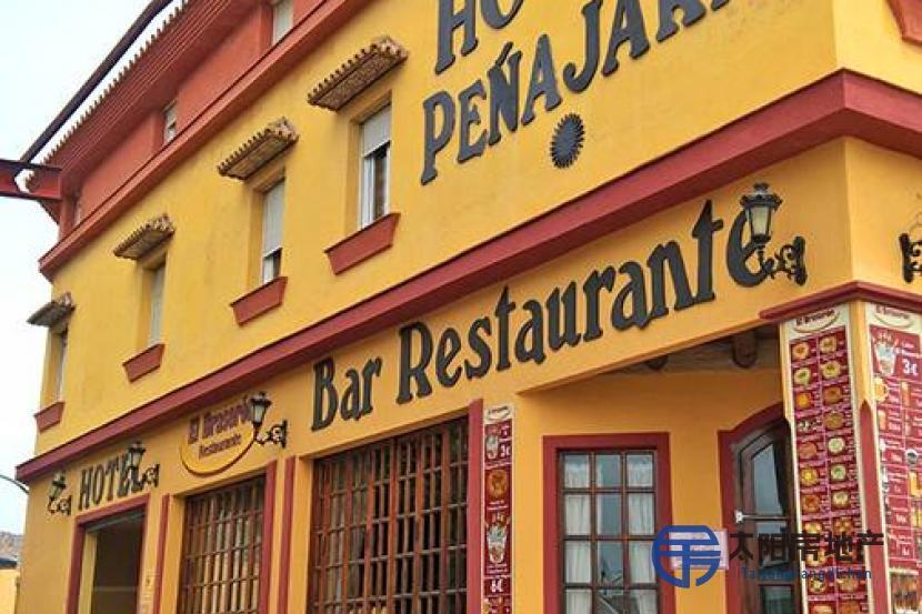 出售位于Marbella (马拉加省)市外的酒店