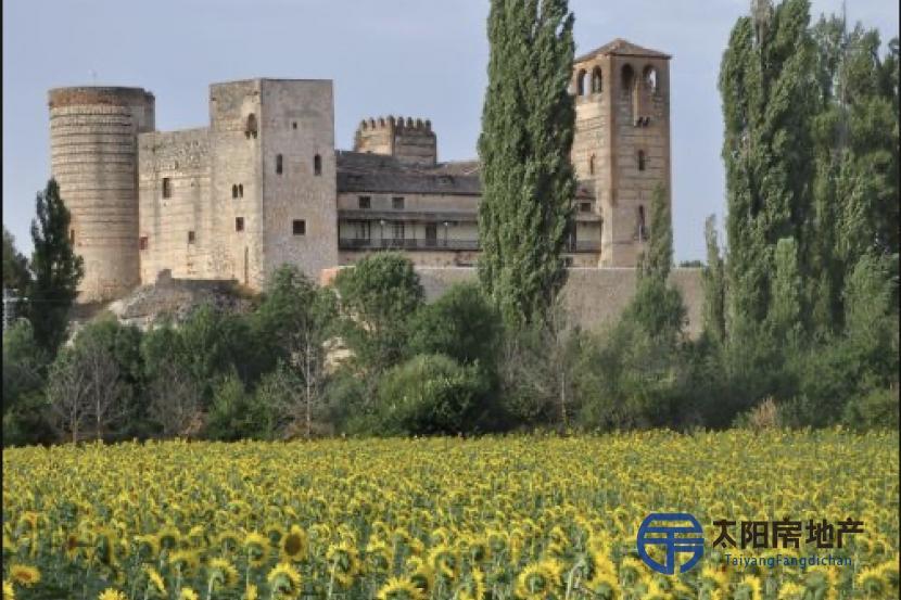 位于Segovia的城堡...
