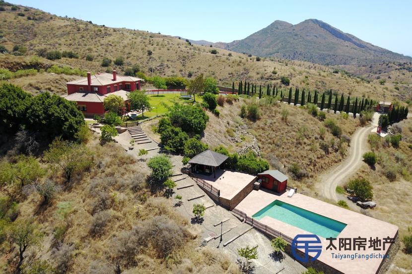 出售位于Malaga (马拉加省)市外的郊外别墅